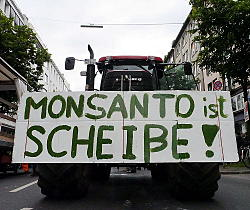 'MAM - March against Monsanto Düsseldorf'
